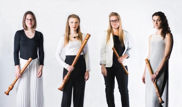 Palisander BW instruments